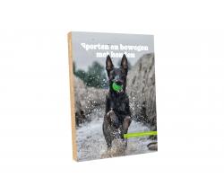 Sporten en bewegen met honden