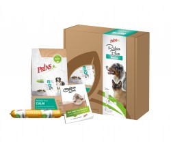 Relaxbox hond